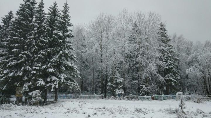 Еще чуть-чуть — и зима: в Пермском крае прошел первый сильный снегопад