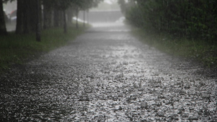 Похолодание и дождь ждут северян в начале рабочей недели