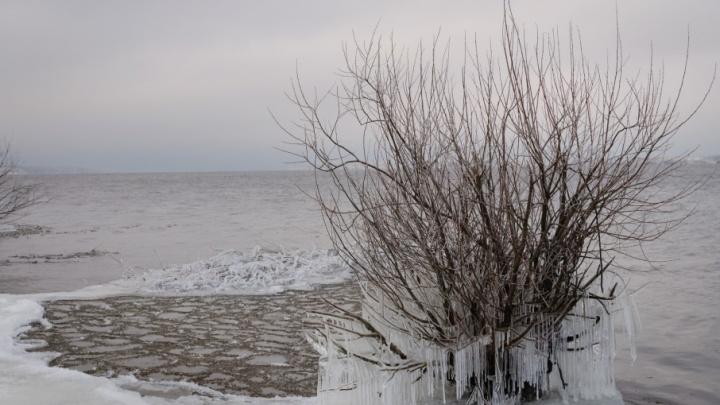 В Ярославской области двое рыбаков зверски убили друга и сбросили его тело в водохранилище