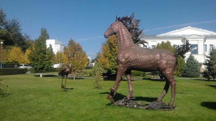 Железные кони и журавль поселились в областной больнице Волгограда