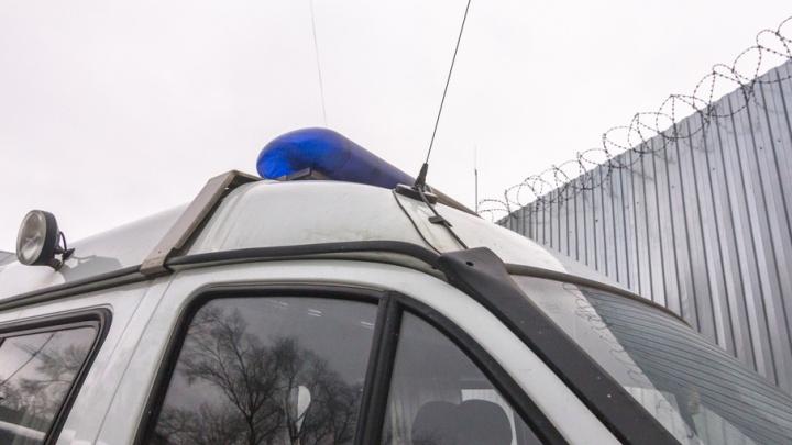 В Отрадном грабителя отследили в режиме онлайн