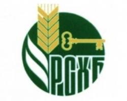 «Россельхозбанк» на Дону развивает сотрудничество с риелторскими компаниями