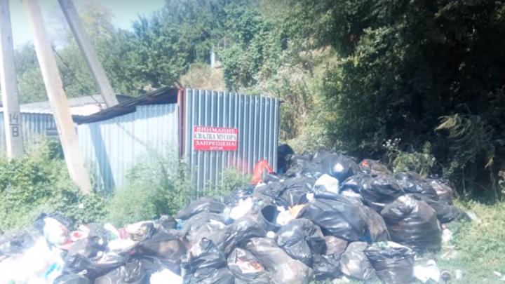 После публикации 161.ru коммунальщики расчистили свалку на Сурб-Хаче