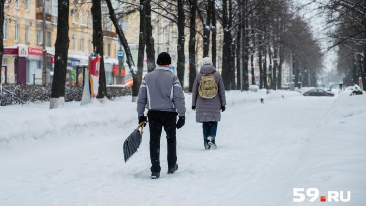 Прохладно и снежно: публикуем прогноз погоды в Прикамье на рабочую неделю