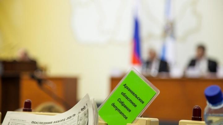 Миллионные доходы и дома за границей: кто в Архангельской области из жен депутатов богаче всех?
