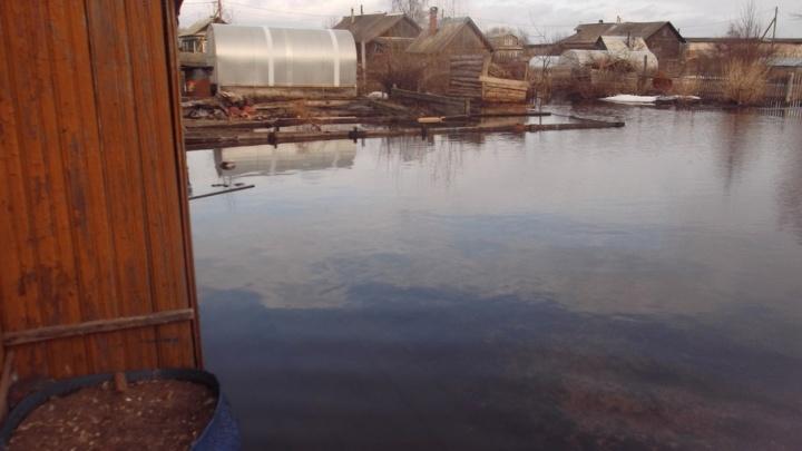 Остров Краснофлотский и Кемский поселок может подтопить в эти выходные