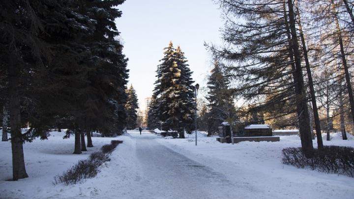 Жители всех районов Челябинска определились с местами отдыха для благоустройства