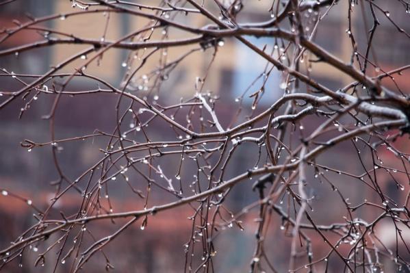 На юге области обещают тепло до +19°С