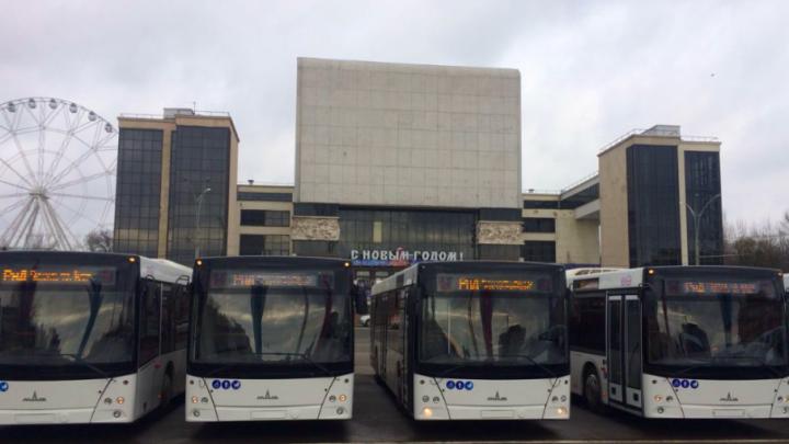 Экологически чистые, с кондиционерами и камерами: в Ростове презентовали новые автобусы
