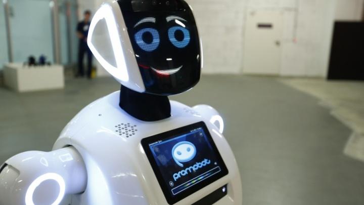 В Ярославль привезли японских и американских роботов будущего