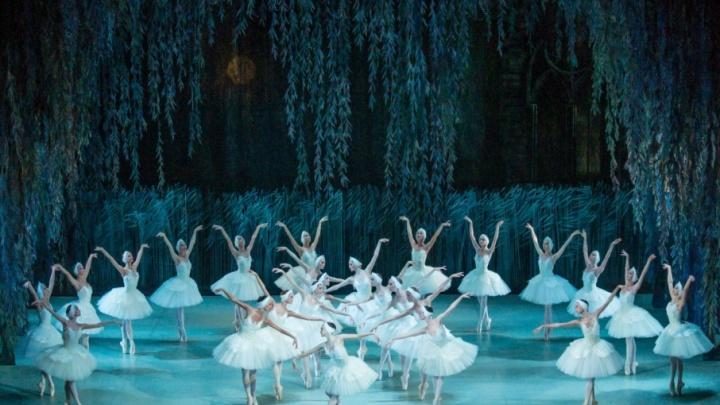 Пять вечеров в Перми: смотрим «Лебединое озеро» и молодежный танцевальный баттл