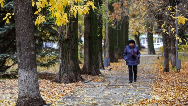 Волгоградцы проводят октябрь теплой и дождливой погодой