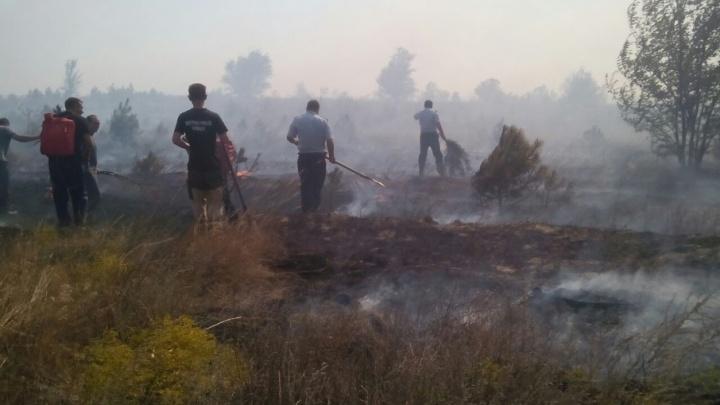 Вертолет МЧС вылетел тушить крупный пожар в сосновом питомнике Ростовской области