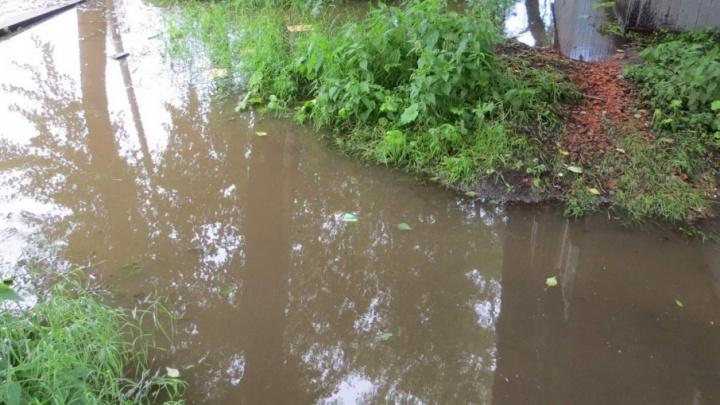 Работу канализации на улице Серафимовича восстановят в ближайшее время