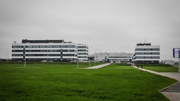 Больше автобусов, концертная зона и дополнительные рейсы: как будет работать аэропорт Платов во время ЧМ