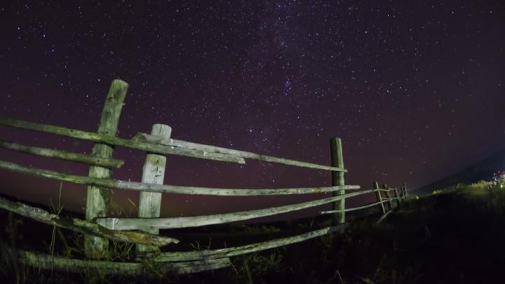 Жители Архангельска в декабре увидят два больших звездопада