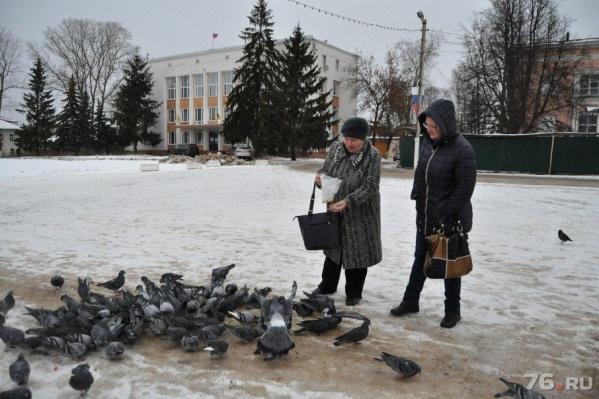 Жителям Переславля предлагают самим решить, объединяться с районом или нет