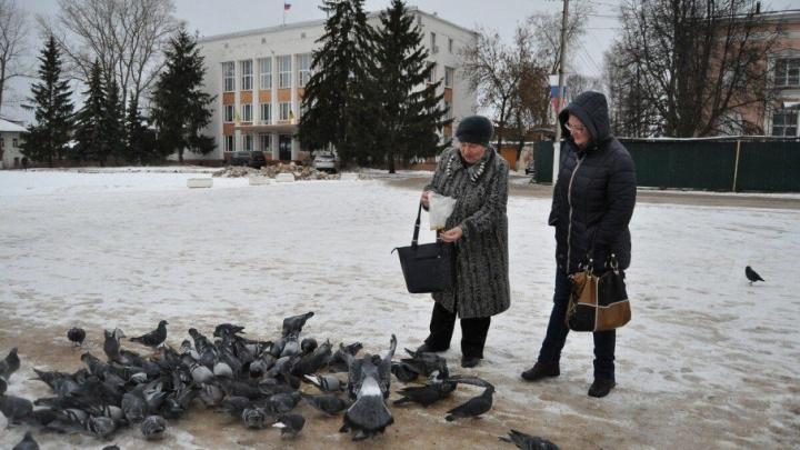 Переславль-Залесский станет больше: город объединят с районами и сёлами