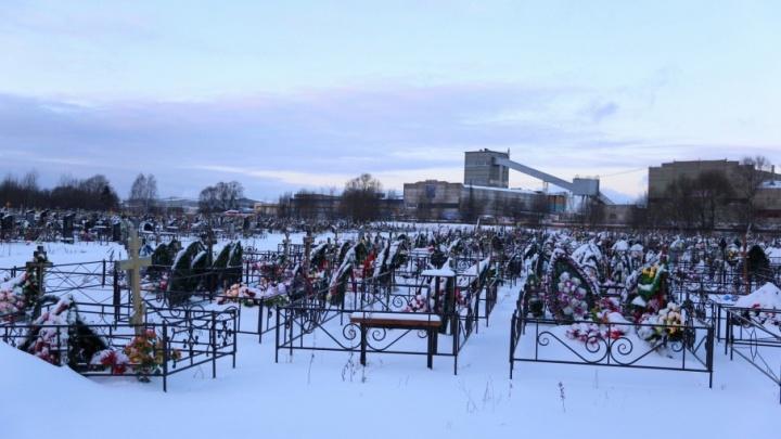 Прокуратура взялась за чиновников за идею строить кладбище на ручье, текущем в Волгу