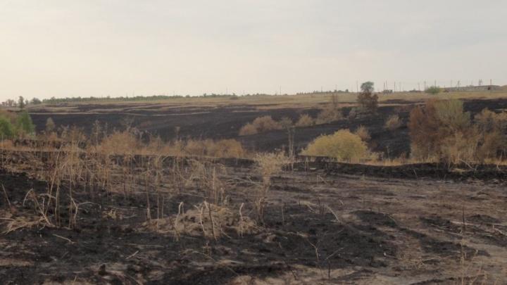 Возникший из-за учений пожар вновь подступал к хутору в Волгоградской области