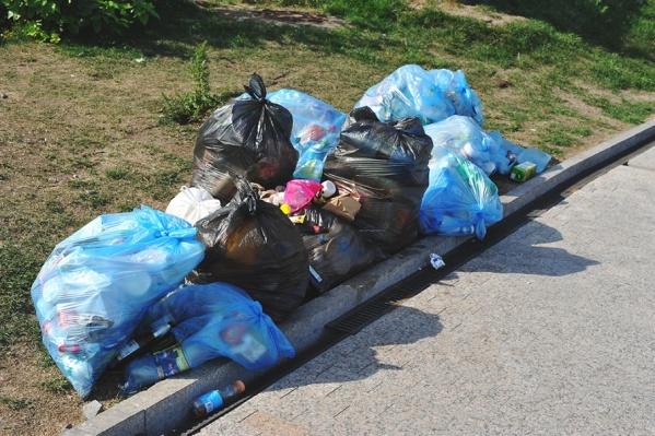 Новый региональный оператор перестанет отправлять весь мусор прямиком на свалку. Сначала его будут сортировать, отбирая все, что можно отправить на переработку