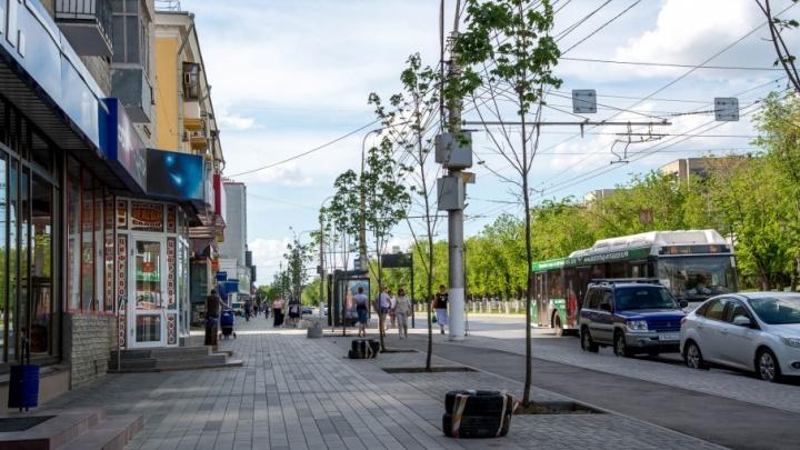 Волгоградские автохамы заселили новую велодорогу на Невской
