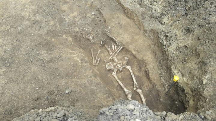 В Ростове на месте древнего могильника на Станиславского вновь нашли человеческие останки