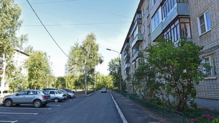 Ярославцы заказали для дуба во дворе золотую цепь