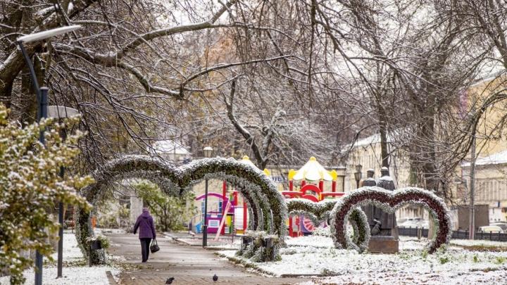 Первый снег в Ярославле: репортаж с побелевших улиц города