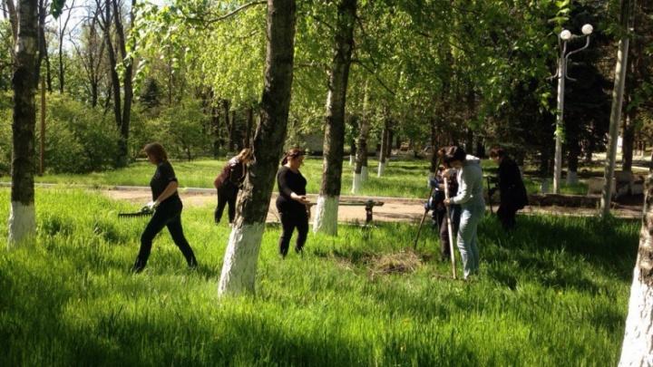 За полгода в Ростовской области к оплачиваемым работам привлекли более 16,5 тыс. несовершеннолетних