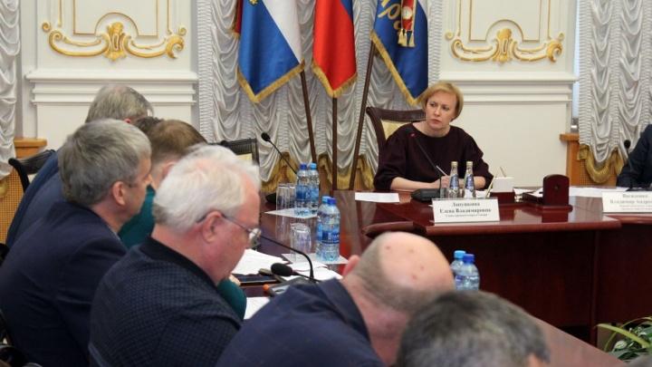 Мэр Лапушкина отправила глав районов Самары на прогулку