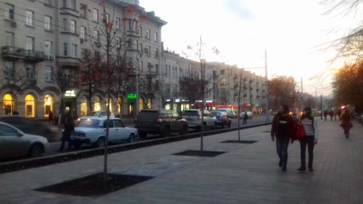 «Большая Садовая — это ваше лицо»: губернатор раскритиковал чиновников за разруху на центральной улице