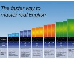 Международная система уровней: быстрый способ выучить английский