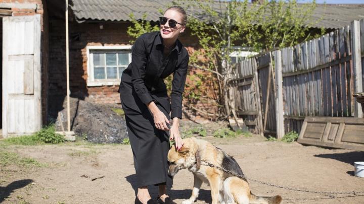 Елена Летучая выгуляла собак в ярославском приюте: фоторепортаж