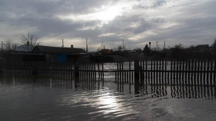 Большая вода отступила от одного района Волгоградской области