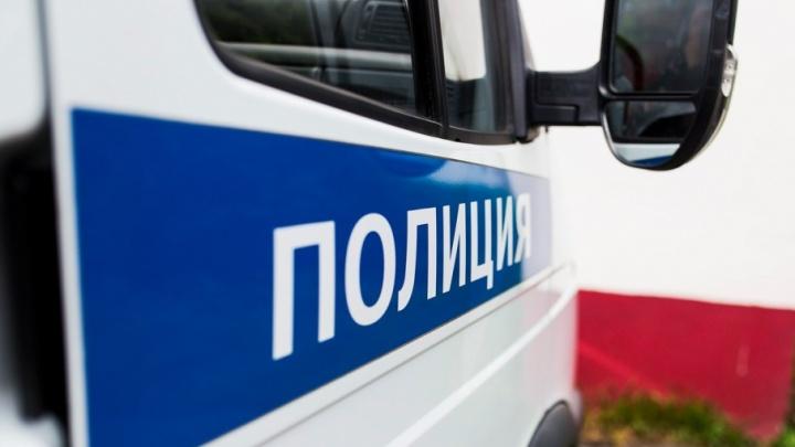 Ярославская пара спустя сутки вышла из леса благодаря полицейским мигалкам