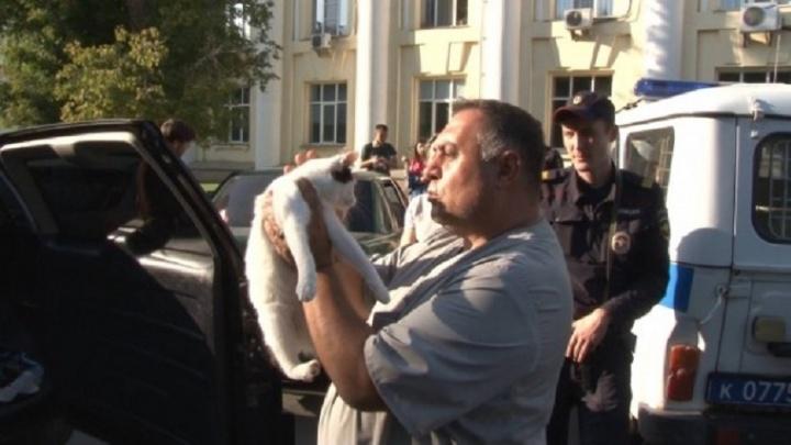Спасение котов, запертых в авто в Челябинске, стало темой ток-шоу на Первом канале