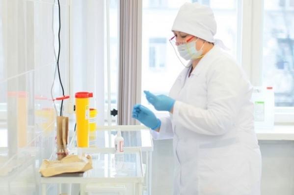 Челябинская область входит в зону риска по возможности возникновения клещевого энцефалита