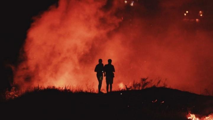 На Дону за минувшую неделю трава горела больше 20 раз