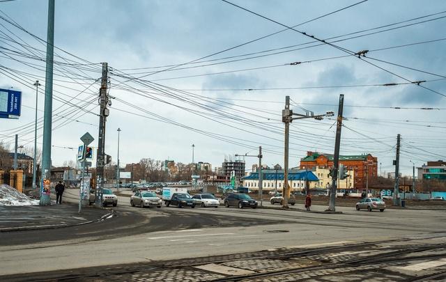 Вязы и барбарисы: изучаем проект озеленения площади Павших революционеров