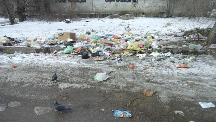 Мусор поселка Ангарский в Волгограде не умещается в скромные баки