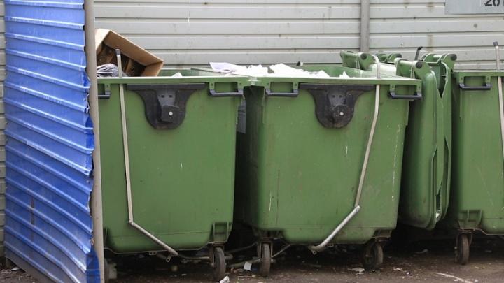 Минэкологии определило, кто будет утилизировать мусор в семи городах Южного Урала