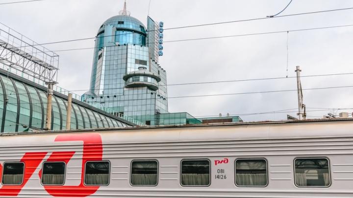 В Самаре с поезда сняли 14-летнюю девочку с амфетамином и чемоданом алкоголя