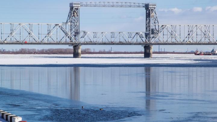 Проект модернизации железнодорожного моста в Архангельске подготовят к концу 2018 года