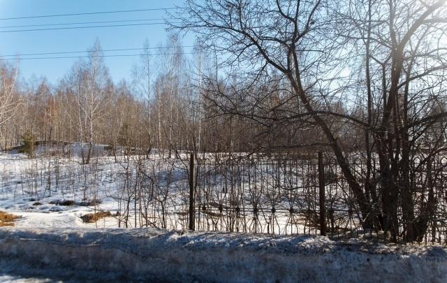 Тюменцы показали чиновникам, в каком состоянии находится Гагаринский парк