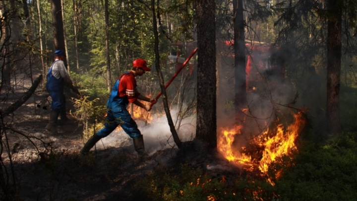 Пожароопасный сезон в Поморье закрыт