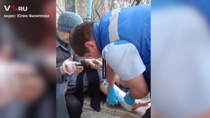 Дворовые псы на проспекте Ленина в Волгограде напали на пожилую женщину