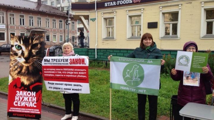 Северодвинцы выйдут на митинг в поддержку закона о защите животных