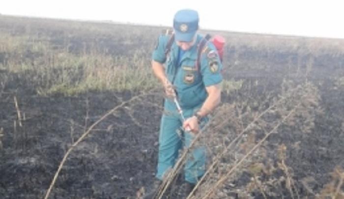 Крупный пожар в Азовском районе тушили более 100 человек
