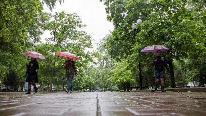 Ближайшая неделя в Ростове-на-Дону будет теплой, но дождливой
